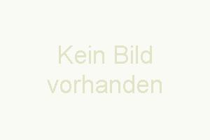 """Bild 13: Ferienhaus """"Finja"""", Urlaub mit Hund, Kamin, Zaun, - 4 P., Ostsee, Bodden"""