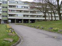 Bild 1: Helle Ferienwohnung in Holm