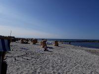 Bild 10: Helle Ferienwohnung in Holm